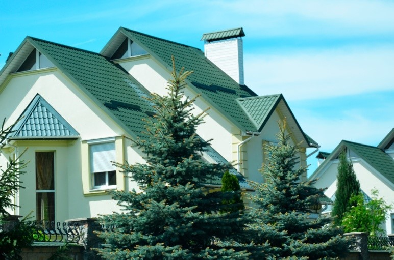 metalocherepitca.jpg