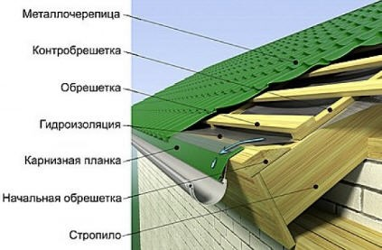 metalocherepitca2.jpg